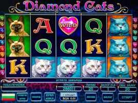 Diamond Cats