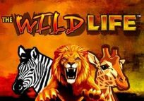 FREE Wildlife Slots Online | Review, Demo, List