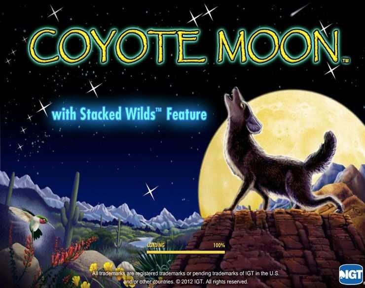 Play Coyote Moon Slot