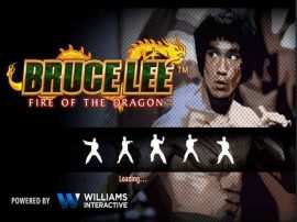 Bruce Lee: Fire of the Dragon