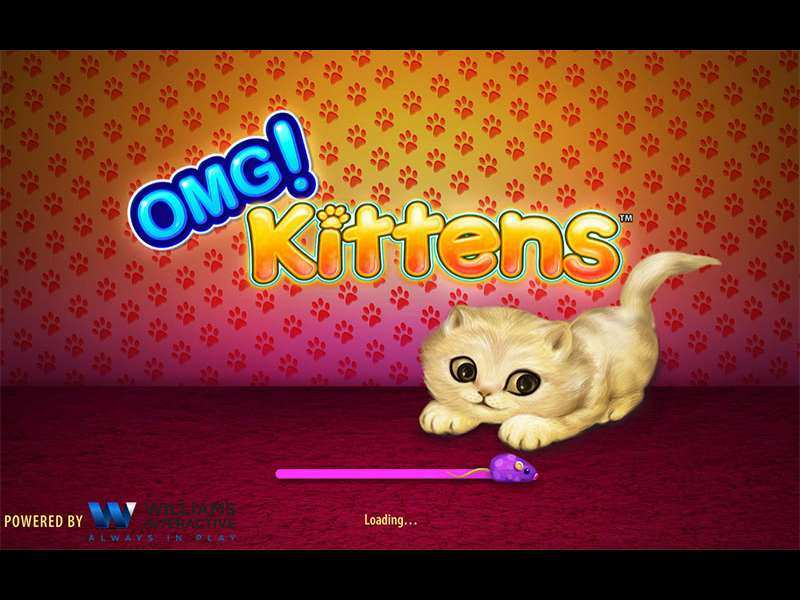 Play OMG! Kittens Slot