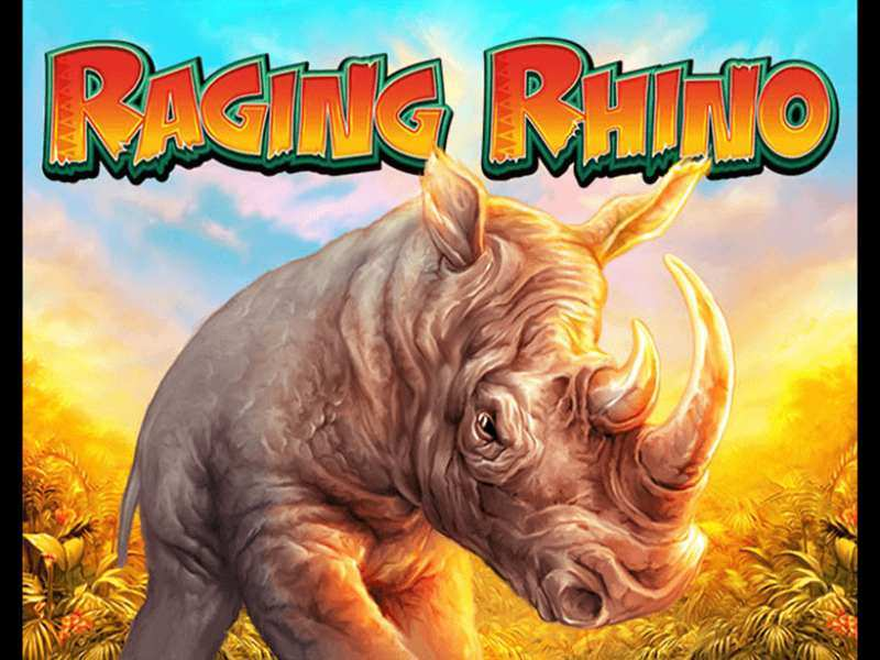 Play Raging Rhino Slot