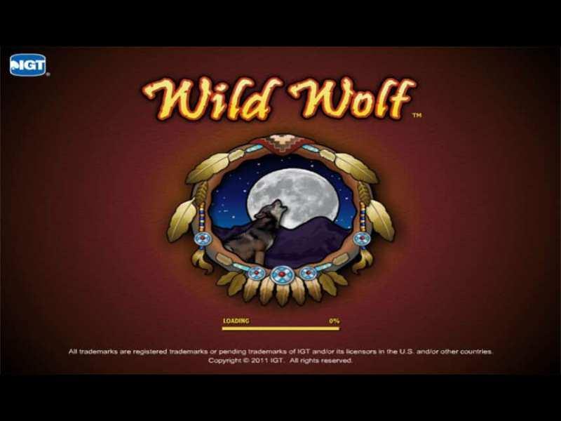 Wild Wolf